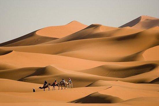 Morocco Family Tours