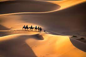 Sahara Dunes Morocco